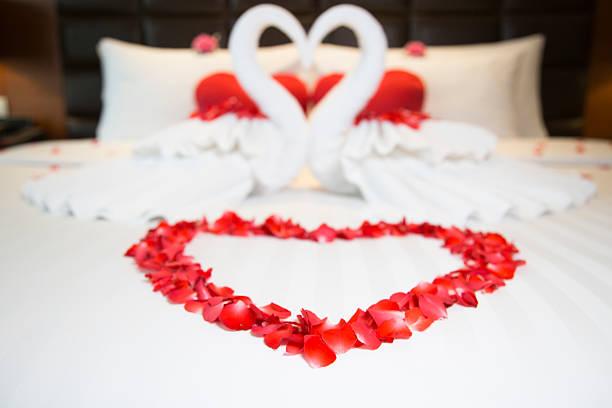 Rose Petals Heart Romantic
